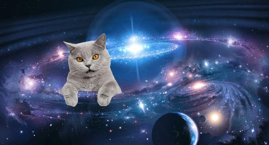 crônicas sobre o universo 9noandar